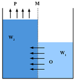 The water potential between fresh water and sea water corresponds to a hydraulic head of 270 metres
