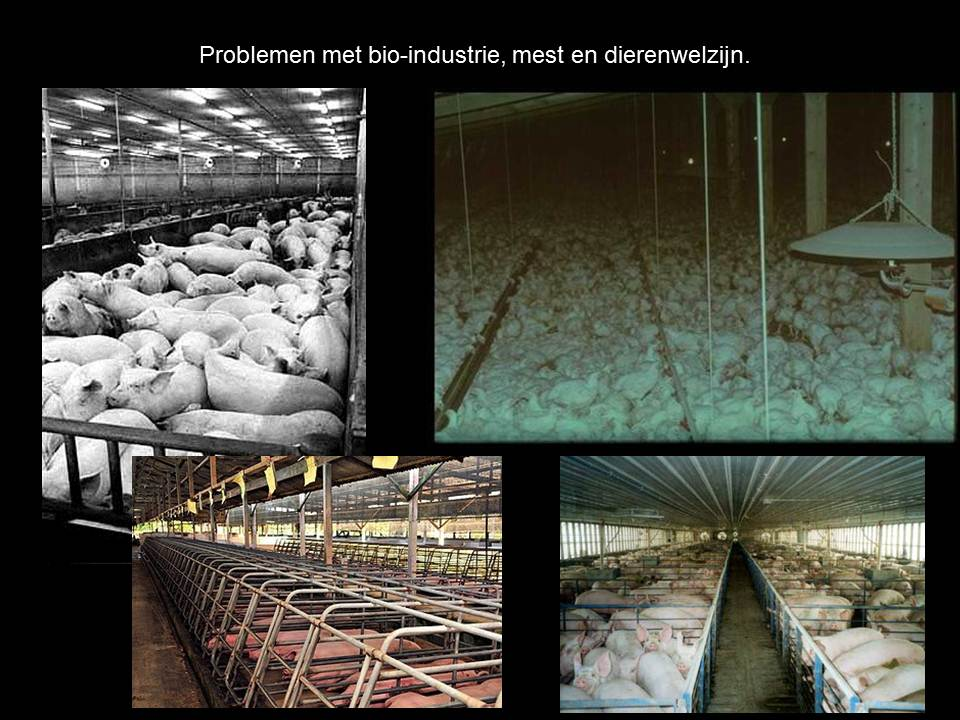 Bioindustrie